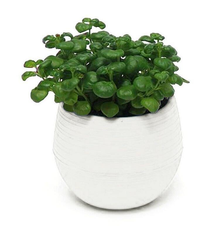 1pcs Gardening Mini Plastic Flower Pots Vase Square Flower Bonsai Planter Nursery Pots /flower pots planters/garden pots 6