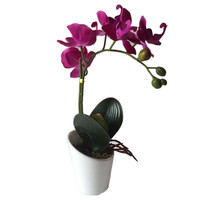 1PCS 32cm Artificial Bonsai Butterfly Phalaenopsis Orchid With Ceramic Flower Pot Silk Artificial Flowers For Wedding