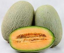 50 SEEDS – Fresh Rare YUBARI KING MELON SEEDS