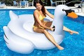 inflatable swimming toys giant swan pool inflatables float swan boias de piscinas  bouee gonflable para la playa flotador swim