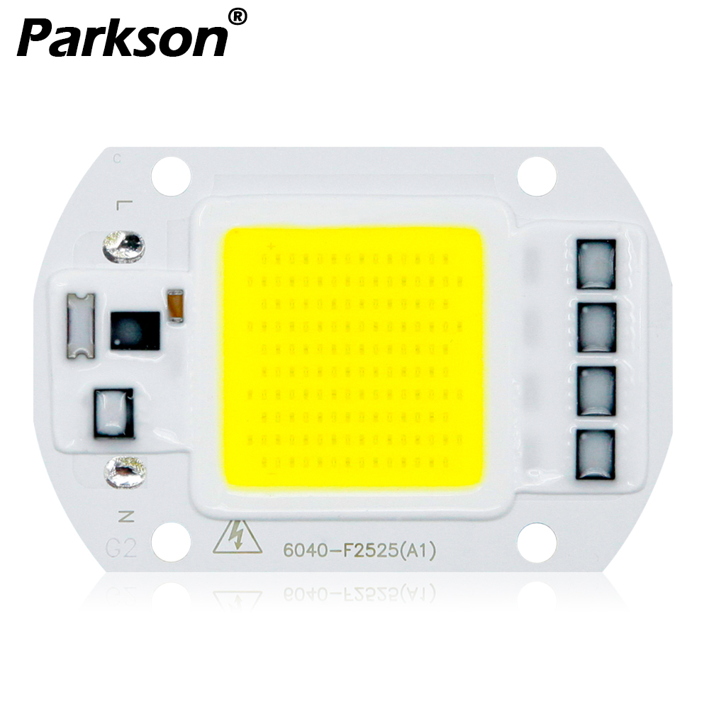 LED COB Lamp 10W 20W 30W 50W Real AC 220V 230V IP65 Smart IC DIY LED Bulb Flood Light Spotlight For Projectors Driver CHIP Light