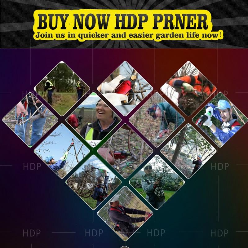 Cesoia elettrica per frutteto HDP36-1 con una coppia completa di lame - Attrezzi da giardinaggio - Fotografia 5