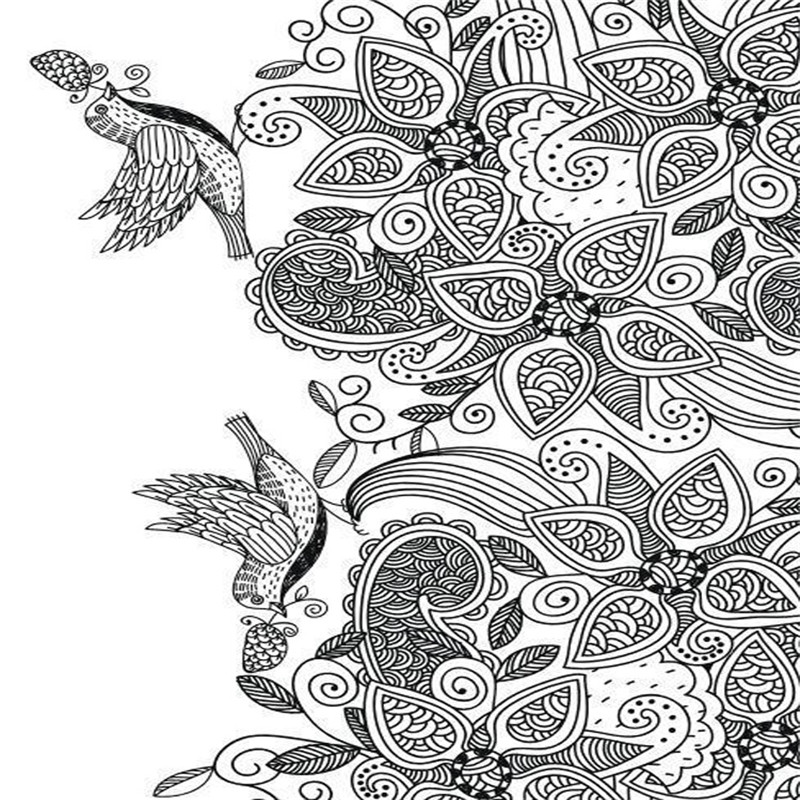 New Bird Dreamland Colouring Book Secret Garden Style Coloring For Relieve Stress Kill Time Graffiti Painting Drawing In Books From Office