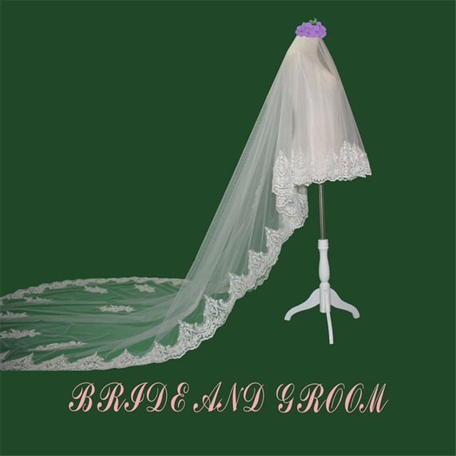 Long Cathedral Wedding Veils 300*150 cm Special Lace Edge Bridal Veil with Comb Wedding Accessories 2017 Bride Wedding Veil