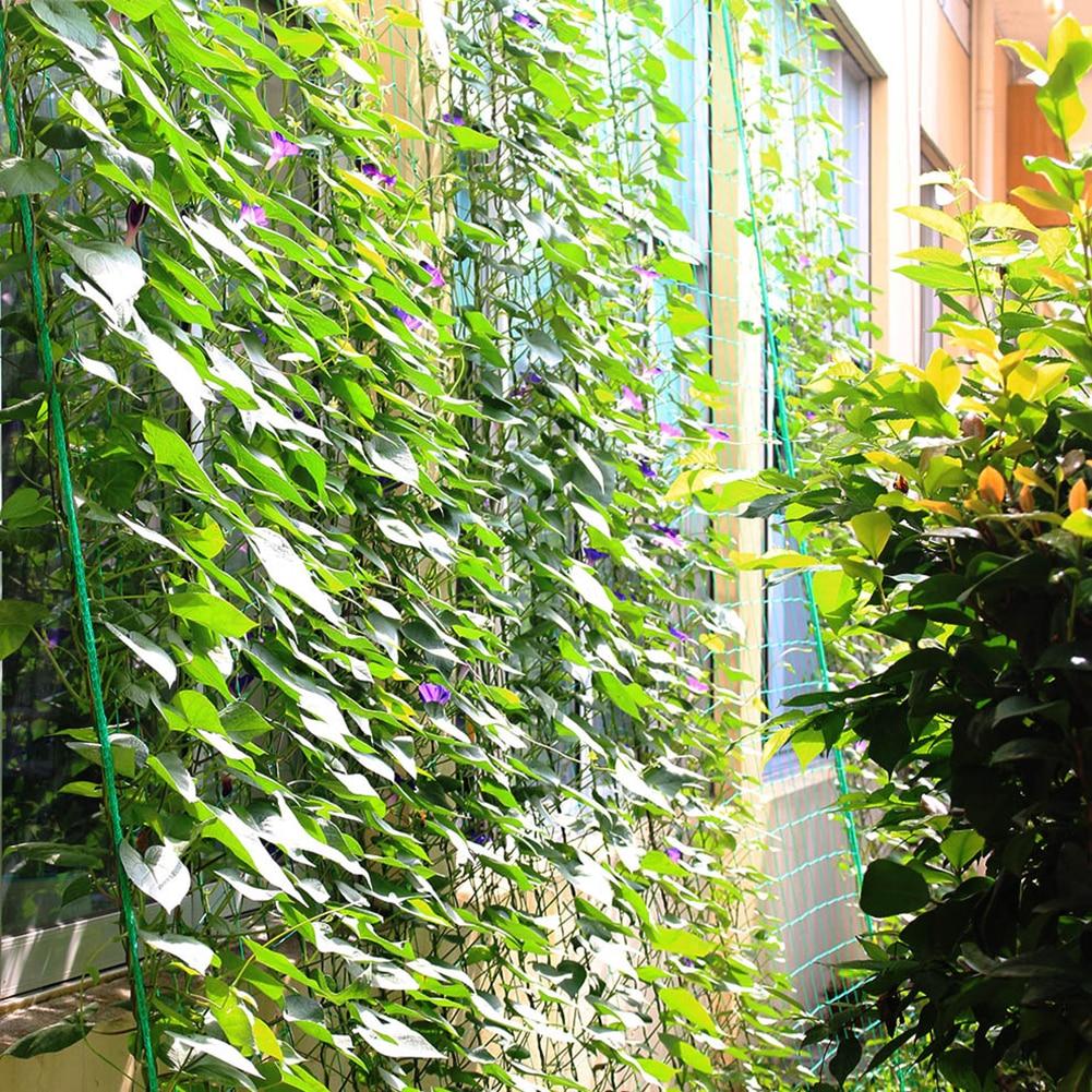 GARDEN NYLON NETTING TRELLIS NET VEGETABLES BEAN PLANTS CLIMBING GROW SUPPORTING
