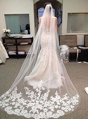 Hot Sale Cathedral Wedding Veils Wedding Veil Birdcage Appliques Veil Ivory Lace Long Bridal Veil 3 Meter