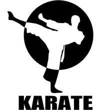 53 Gambar Animasi Karate Keren Paling Keren