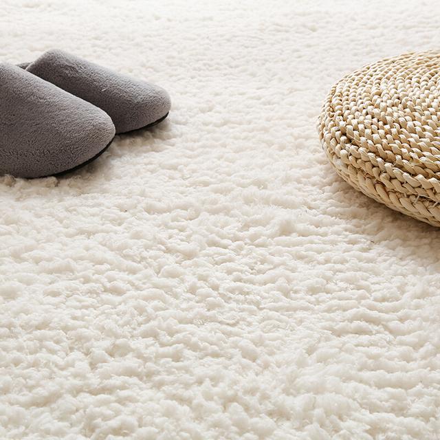 Fluffy Fleece Living Room Carpet