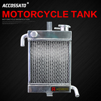 2019 Go Kart Motorcycle Tank Rsz100 Gy6125 Axis125 Jog Fs 100 Rs Zero Gtr Aero 125 Gp110 Gr125 Bws125 Modified Water Cooling