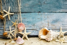 Laeacco Beach Shell Starfish Net Wooden Boards Baby Photography Backgrounds Customized Photographic Backdrops For Photo Studio