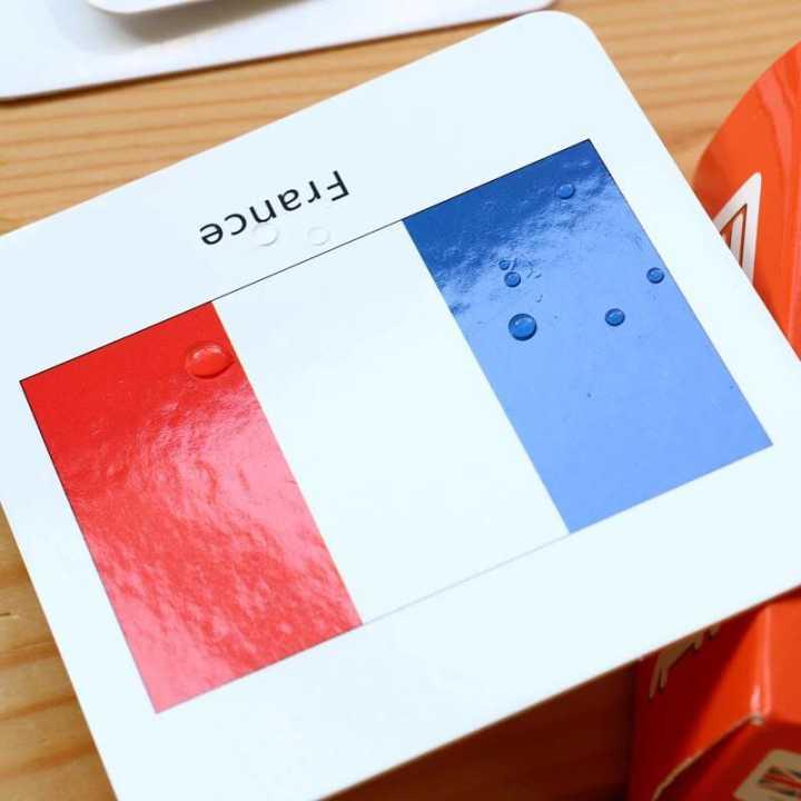 cognitivo bandeira nacional 3d cartões montessori materiais inglês jogos adultos crianças