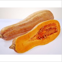 15pcs Vegetable and fruit seeds Honey this pumpkin seeds very sweet Bonsai plants Seeds for home & garden