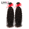 Brazilian Kinky Curly Virgin Hair 2Pcs/Lot Natural Curly Hair Extensions Top Quality Brazilian Hair Weave Bundles Fast Shipping