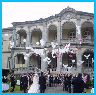 50pcs 104 54cm biodegradable Wedding Party decoration white dove balloon orbs peace bird balloon pigeons marriage