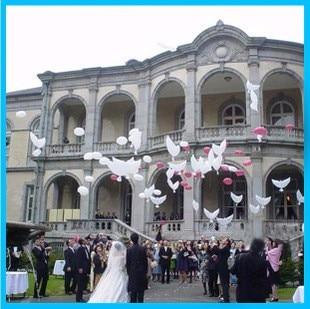 50 pcs 104*54 cm biodégradable décoration de fête de mariage blanc colombe ballon orbes paix oiseau ballon pigeons mariage hélium ballon-in Ballons et accessoires from Maison & Animalerie    1