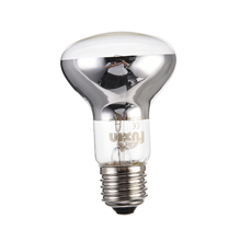Reptile Heating LED Lamp Amphibian Bird Snake Basking Sun Lamp Heat Reptile Light  Bulb Transparent Light