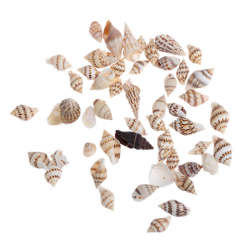 (About 50Pcs) Mini Conch Simulation Beach Shell Model Furniture Toys For Doll House Decoration 1/12 Dollhouse Miniature