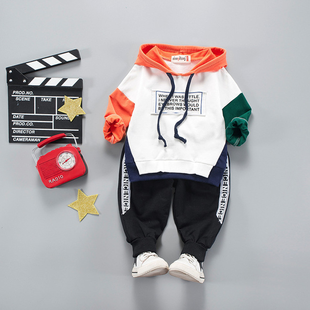 Toddler Clothes Hooded + Pant Clothing Sets 2 - 4 Year Kids 2