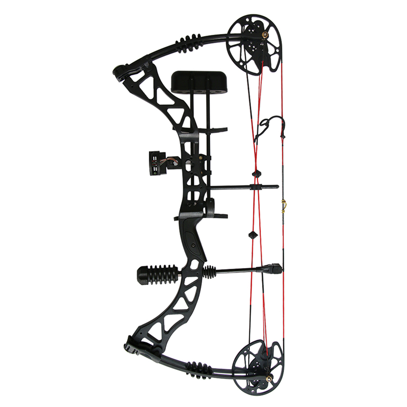 35lbs 70lbs Archery Compound Bow font b Hunting b font Compound Bows with Complete Accessories