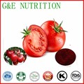 Super Tomato Extract Lycopene Powder 4:1 300g