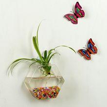 Подвесное растение Цветочная стеклянная ваза Террариум настенный аквариум Декор домашний декор подвесные вазы