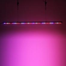 Hot seller Grow lettuce and microgreens LED Lights CP300 60W power strip Aquarium Lighting Light Strip