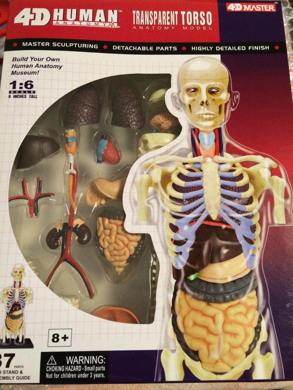 Promoción de Anatomía 4d - Compra Anatomía 4d ...