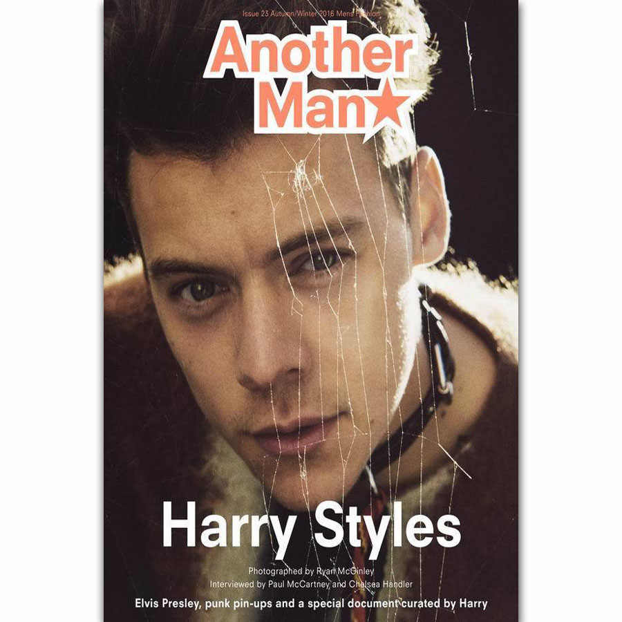 K-596 Harry Styles Music Music Singer Star Fabric Poster 20x30 24x36
