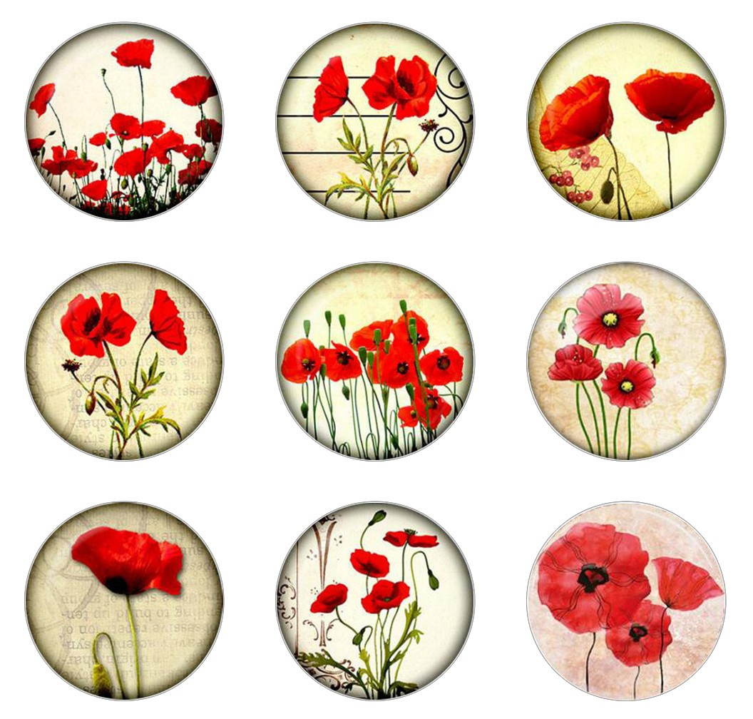 Hot Sale 5pcs16mm20mm25mm Poppy Red & White Flower Nature Handmade Photo Glass Drop Style Cabochons Jewelry Accessories
