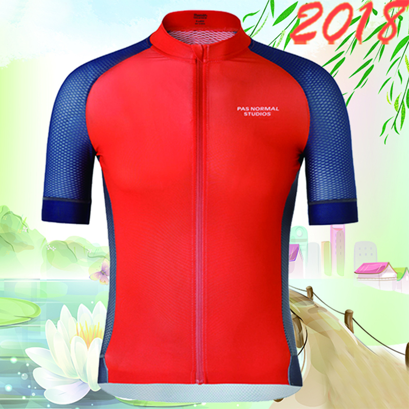 2018 PRO TEAM short sleeve men's summer cycling jerseys ropa ciclismo MTB classical Italy Fabric Very Quick Dry camisa ciclismo