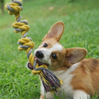 Pets Toys Bite And Bite Action Cleaning Training Dog Cotton Rope Gnash Ball Coughi Teddy Kim A Rope Knot Chewing Gum Articles image