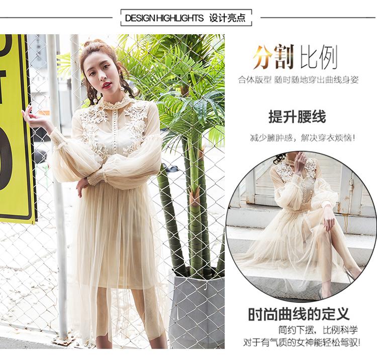 19 New Women Fashion Dress Stand Collar Lantern Sleeve Mesh Dress See-through Lace Embroidery Fairy Dress Femme Vestidos Robe 1