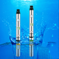 0.75kW stainless steel water submersible tube pump multistage centrifugal pump 220V 18m cable deep well submersible pump