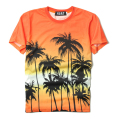 Kpop BigBang T shirt Men 2017 Summer Casual Print Hawaii Coconut Tree Couple Short Sleeved Concert Streetwear Tshirt Men Women