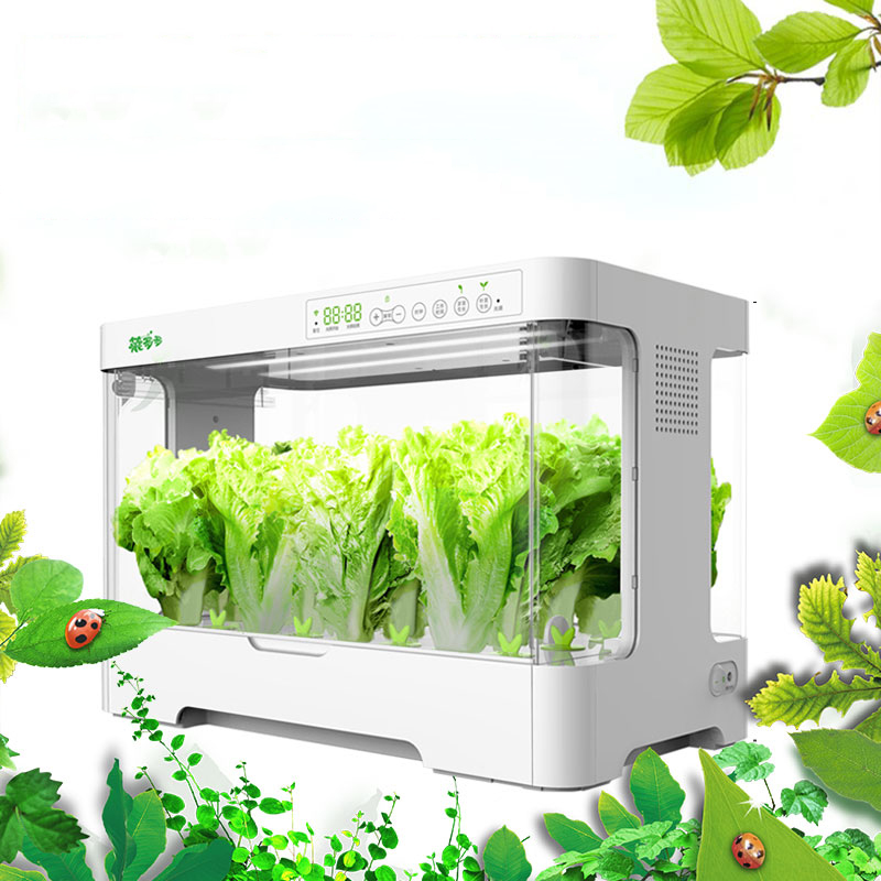 Electronic Water Cultivate Vegetable Seed Planting Enclosed Case Box Soilless cultivation equipment Y