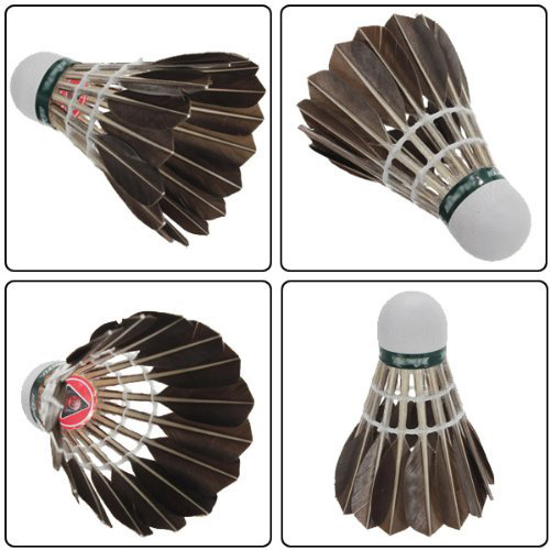 Hot 12x Training Black Goose Feather Shuttlecocks Birdies Badminton Balls