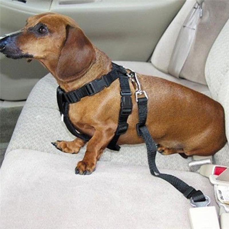 2017 new 5color dog pet car car safety seat belt belt harness restraint lead leash travel. Black Bedroom Furniture Sets. Home Design Ideas