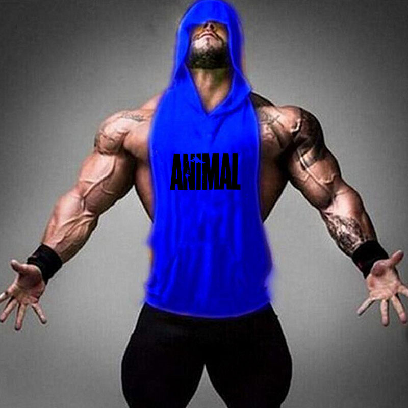 Animal blue
