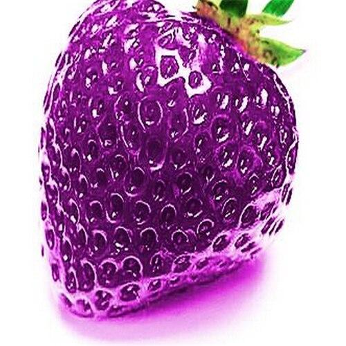 Фиолетовый клубника фрукты семена 200 шт. патио и сад клубника комнатных растений семена плодов