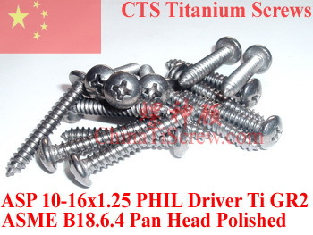 Titanium screws 10x1.25 Pan Head 2# Phillips Driver Ti GR2 Polished 50 pcs
