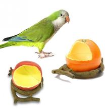 New Novelty Birds Feeder Parrot Birds Hamsters Feeder Food Container Plastic Orange/Pomegranate Cup Food Bowl Drinkers for Birds