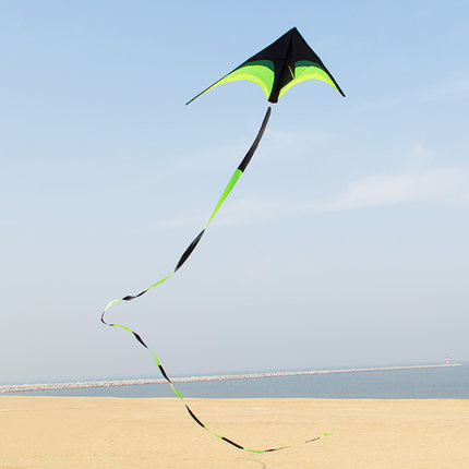 2M Steppe Kite Stunt Kite With 10M Long Tail Triangle Rainbow Kite Easy Flying Outdoor Sports
