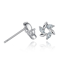Europe And America Fashion Zircon Windmill Crystal Stud Earrings For Women Set Accessories Dropshipping