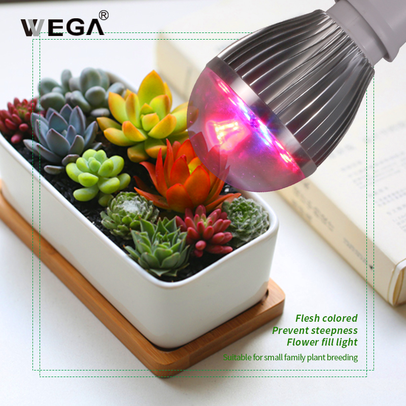 WEGA LED Plant Growth Light Red Blue Spectrum Transparent Lampshade Fleshy Flower Seedling Plants Planting Indoor Plant Lamps