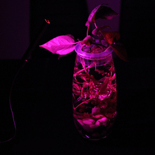 1 x Portable LED Grow Light Lamp USB LED Plant Growth Light for Home Indoor Desktop Plants Imitation Sunshine Light P15