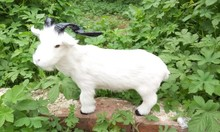 large 37x28cm simulation sheep model toy,polyethylene&furs white goat toy,prop,home decoration,Xmas gift c573