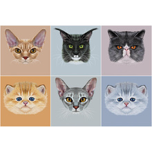 Oly 5D Diamond Painting Cat Face Full Round mosaic Cute Picture Rhinestone Embroidery