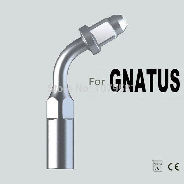ED1, gnatus, эндодонтического канал уборка, эндодонтии файл, гигиена полости рта, стоматологического оборудования, стоматологических инструментов