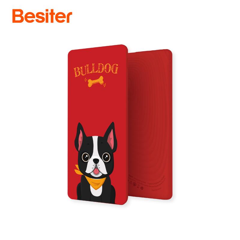 Besiter 10000mAh Quick Charge Power Bank External Battery Portable Mobile Backup Bank Charging Charger for Android Xiaomi iPad D