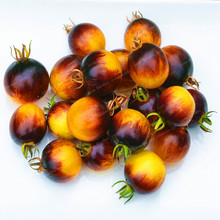 100 Pcs Tomato Seeds Tasty Yellow Black Tomato Seeds Organic Food Seeds Vegetables Easy Growing Bonsai Pot Plant